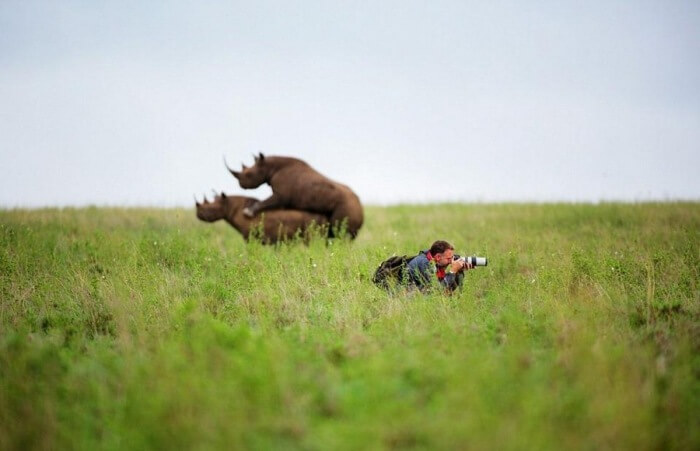 Free Pokies Black Rhino