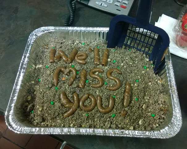 hilarious farewell cakes 1