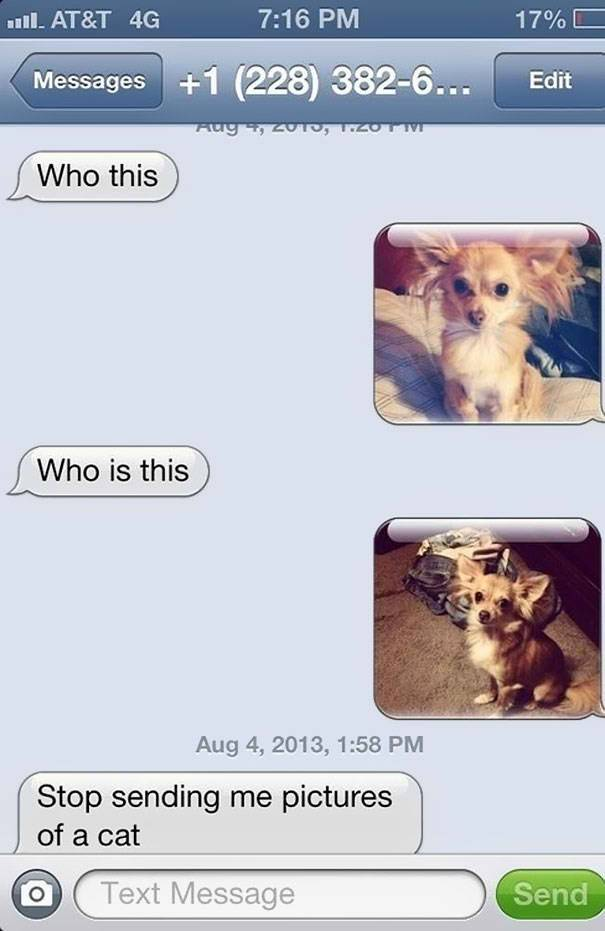funniest replies to wrong number 6